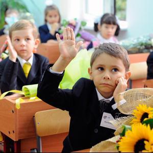 Школы Красноборска